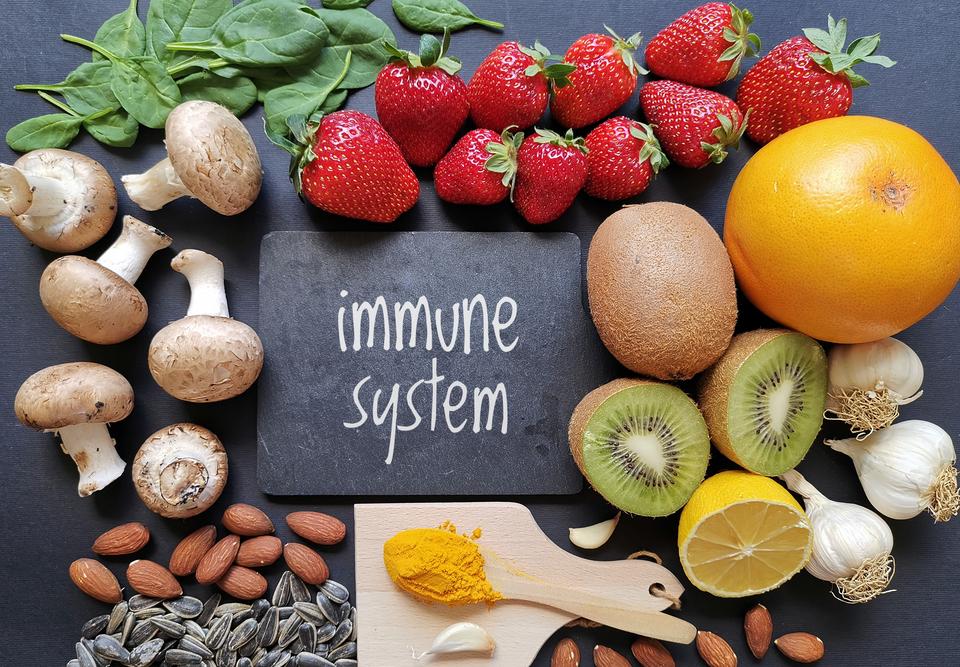Immune system Part 1